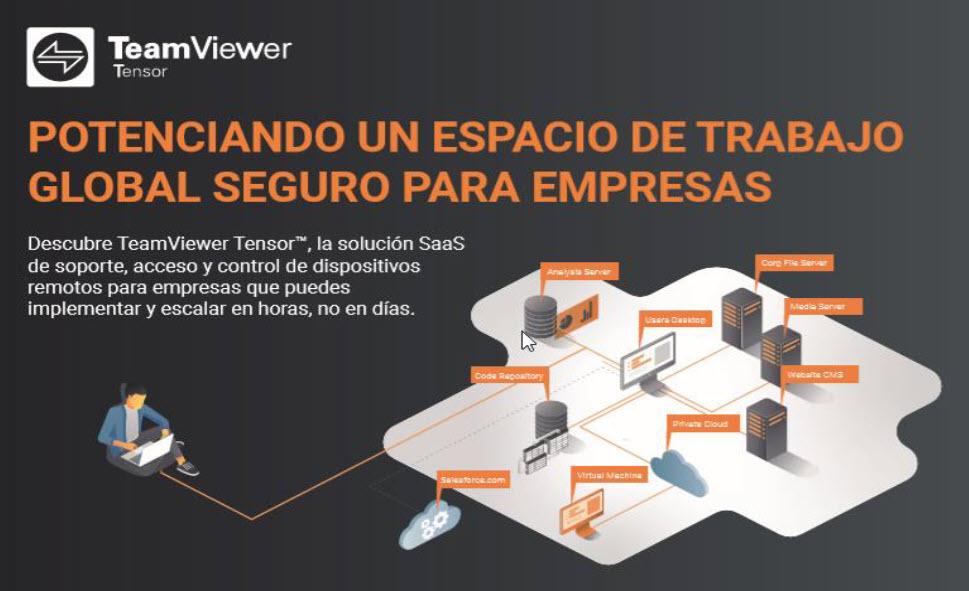 teamviewer_tensor